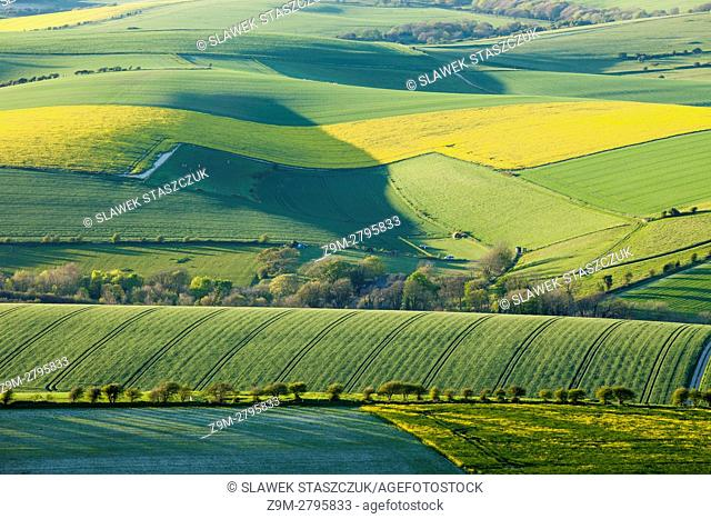 Spring afternoon in South Downs National Park near Brighton, East Sussex, England