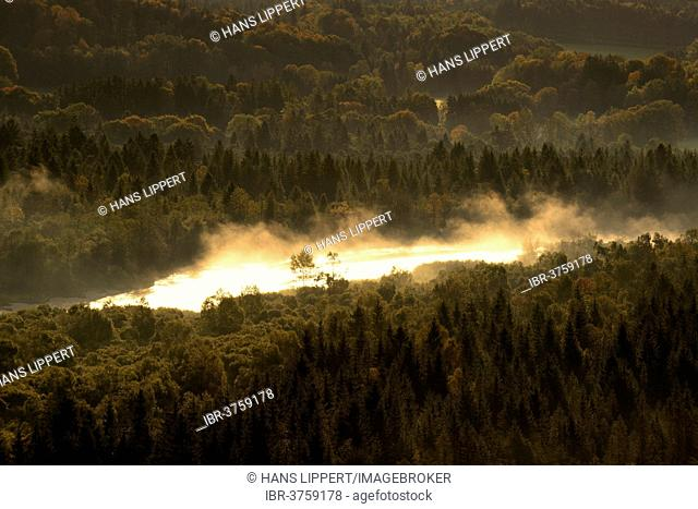 Isar River in the morning fog, Pupplinger Au, Isar Valley, Schlederloh, Icking, Upper Bavaria, Bavaria, Germany