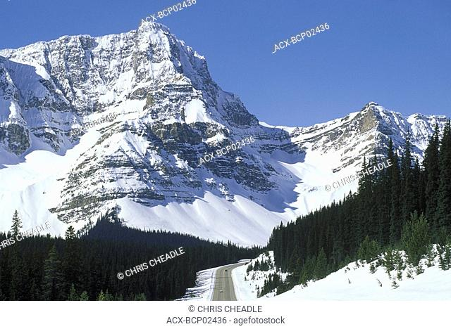 Rocky Mountain going north to Jasper, Icefields parkway, Alberta, Canada