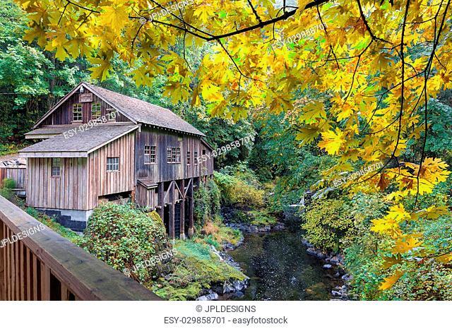Cedar Creek Grist Mill with Giant Maple Tree Foliage during Fall Season