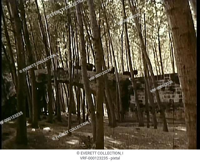 Horse drawn carriage traveling over bridge through woods