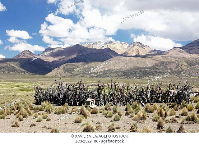 Landscape of the National park of Sajama, with old volcano and snow, and barrier to corral the lamas, Altiplano, Bolivia