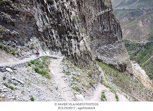 Path and vegetation during the hiking in Colca Canyon, Peru