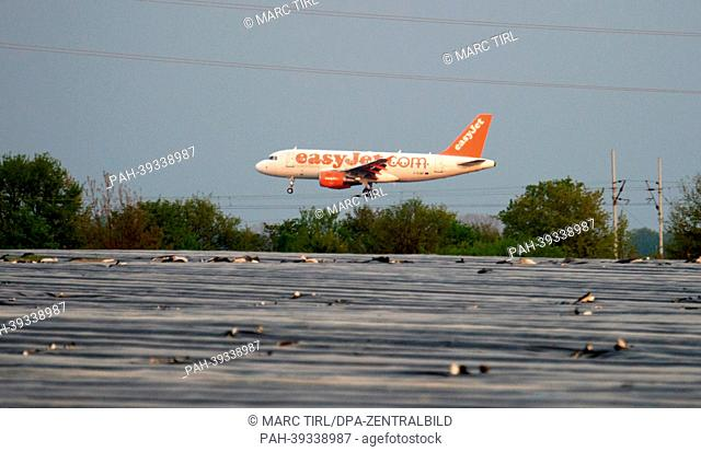 A plane of the airline easyJet lands on a runway of Schönefeld Airport in Berlin,Germany, 06 May 2013. In the foreground, an asparagus field is pictured