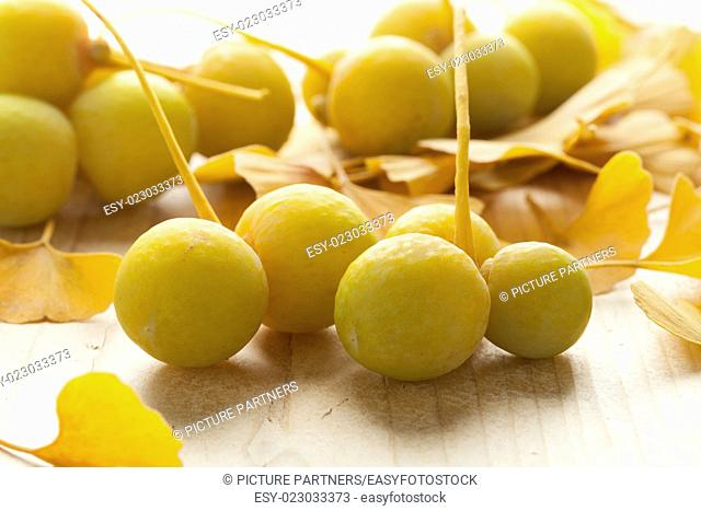 Ripe yellow Ginkgo biloba fruit