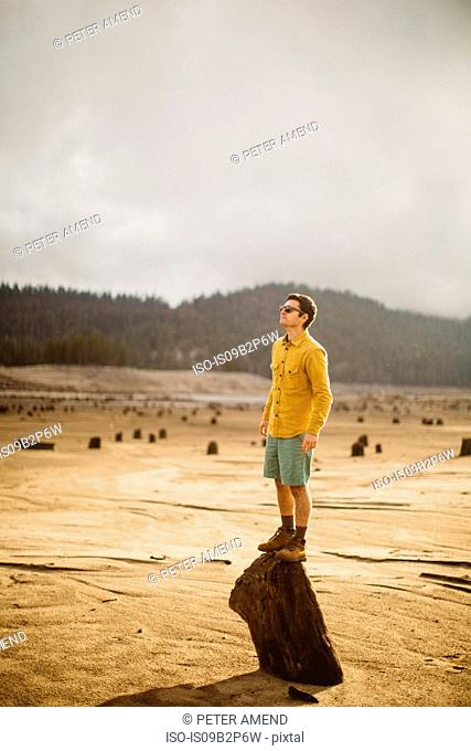 Portrait of young man standing on wood, Huntington Lake, California, USA