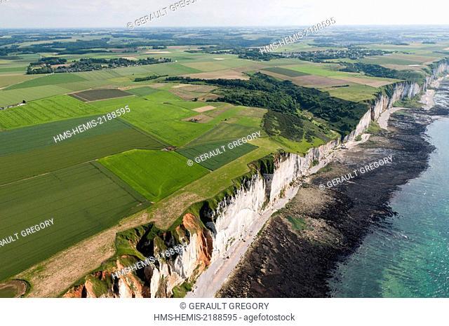 France, Seine Maritime, Pays de Caux, Cote d'Albatre, coast between Fecamp and Etretat, Valleuse, cliffs, rocky reef (aerial view)