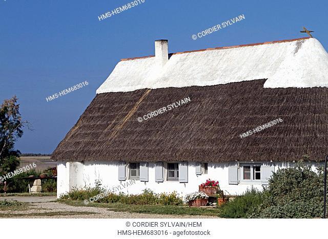 France, Bouches du Rhone, Saintes Maries de la Mer, gardian hut