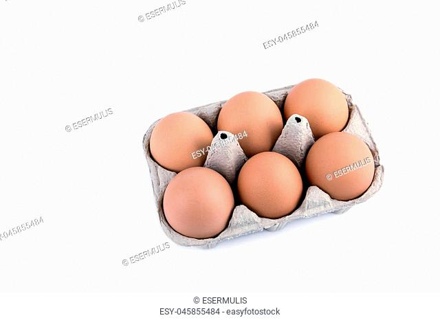 Close-up view of raw chicken eggs in box on white background