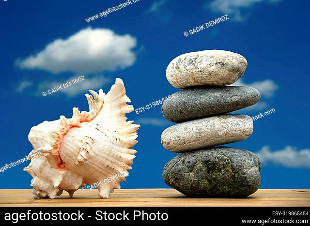 pile of pebble stones and a seashell