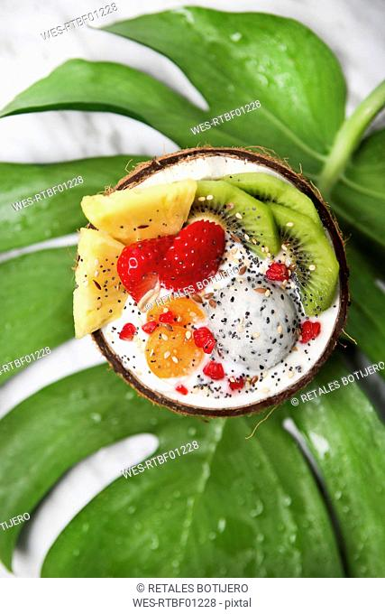 Coconut bowl with variuos fruits, natural yoghurt and seeds on leaf