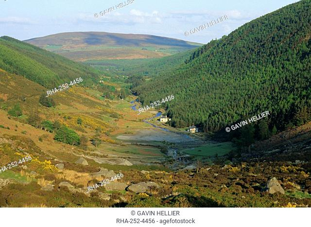 View down a valley near Glendalough, Wicklow Mountains, County Wicklow, Leinster, Republic of Ireland Eire, Europe