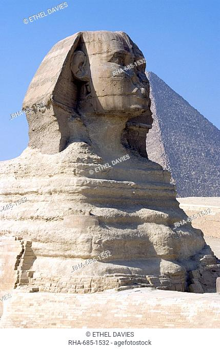 The Sphinx at the Pyramids, Giza, UNESCO World Heritage Site, near Cairo, Egypt, North Africa, Africa