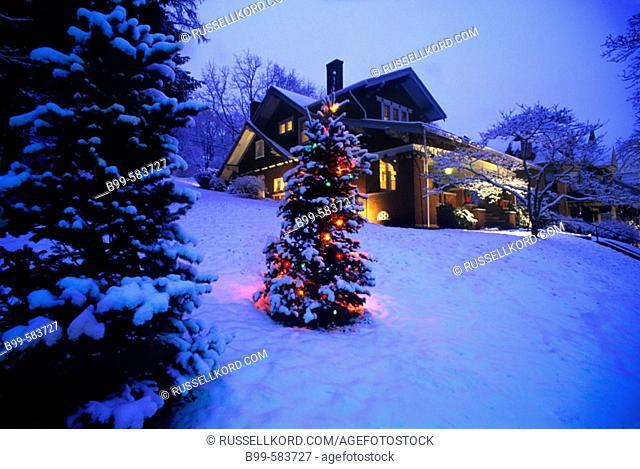 Snow, Christmas Tree & House, Brookville Historic District, Pennsylvania, Usa