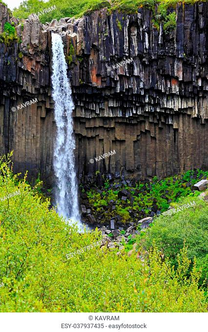Magnificent waterfall Svartifoss in Icelandic Skaftafell park. Black basalt faces framed by a jet of water