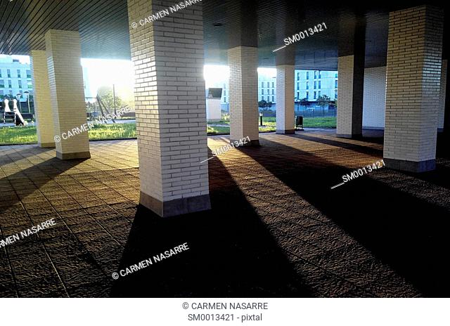 Outside ground floor of a building with columns and garden at dawn