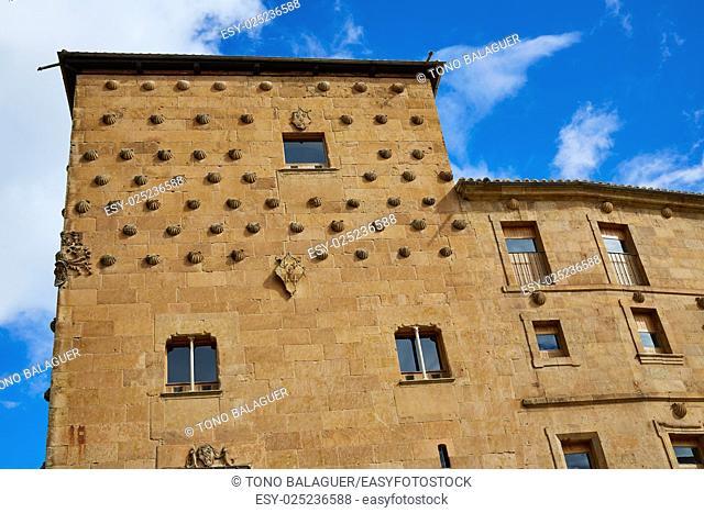 Casa de las Conchas shell house in Salamanca of Spain