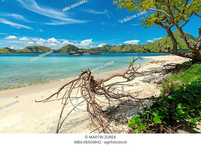 Landscape of a typical island in the Flores sea, Indonesia, Komodo, UNESCO, world heritage
