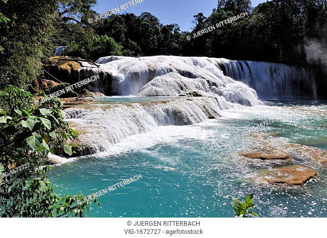 MEXICO, PARQU, 25.08.2009, cascades of Agua Azul, Parque Nacional Agua Azul, Chiapas, Mexico, Latin America, America - PARQU, CHIAPAS, MEXICO, 25/08/2009