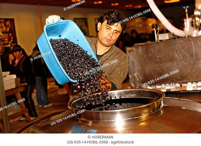 Pouring Grapes into Fermentation Tank, Chile