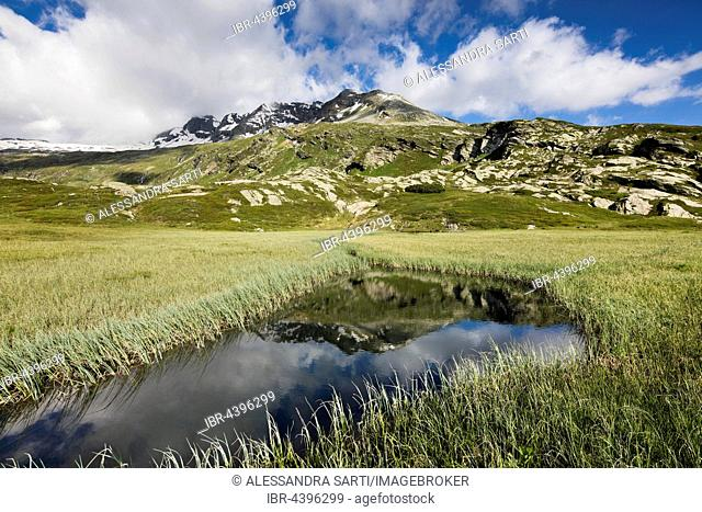 Moorsee, San Bernardino Pass, Grison Alps, Graubünden Canton, Switzerland