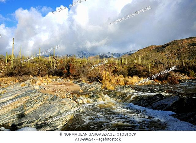 Snow covers the Santa Catalina Mountains in the Coronado National Forest in the Sonoran Desert,Tucson, Arizona, USA. Bear Creek flows after a winter storm