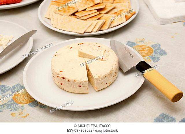 delicious homemade cheese ready to be eated