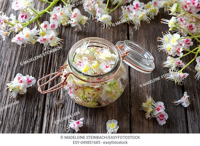 Preparation of herbal tincture from blooming horse chestnut