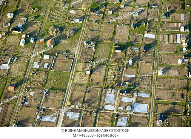 Small houses, cultivate area, summer huts, aerial view. Visby. Gotland. Sweden