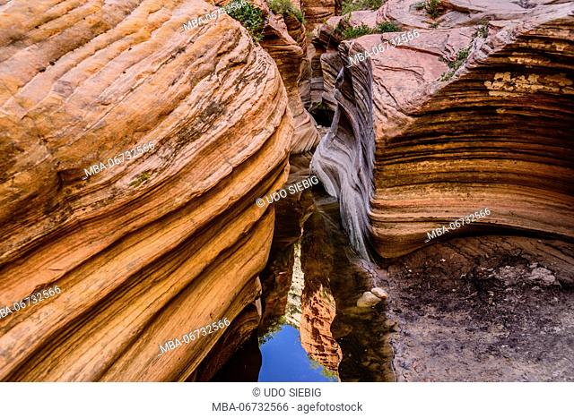 The USA, Utah, Washington county, Springdale, Zion National Park, Zion canyon, echo canyon, view from observation Point Trail
