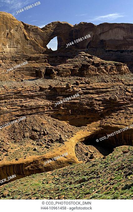 alcove, cottonwood, cottonwoods, Coyote Gulch, bottom, desert varnish, drainage, Escalante, Glen Canyon, National Recreation Area, Grand Staircase Escalante