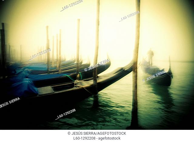 Gondolier in the canal, Venice, Italy