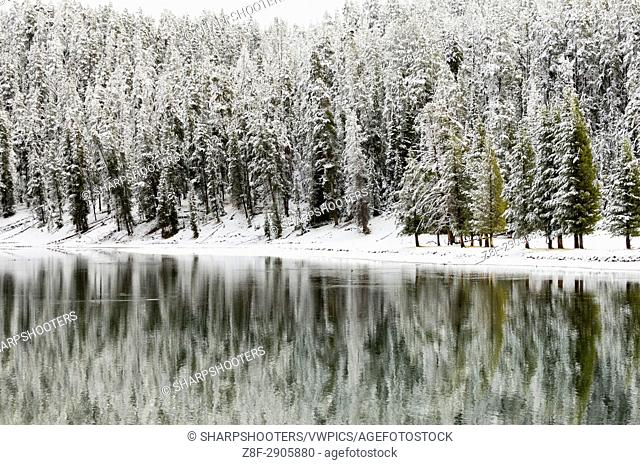 Yellowstone River in winter, Yellowstone National Park, Wyoming, USA