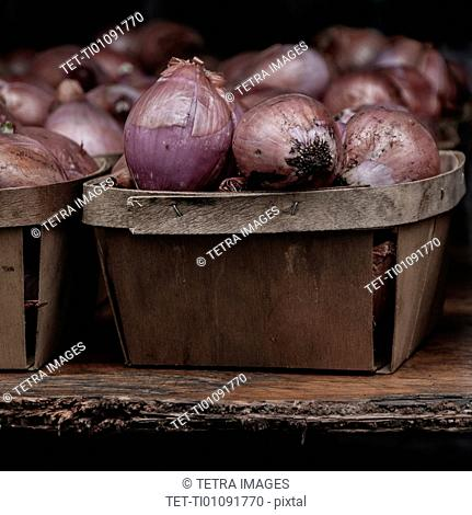 Red onions in containers
