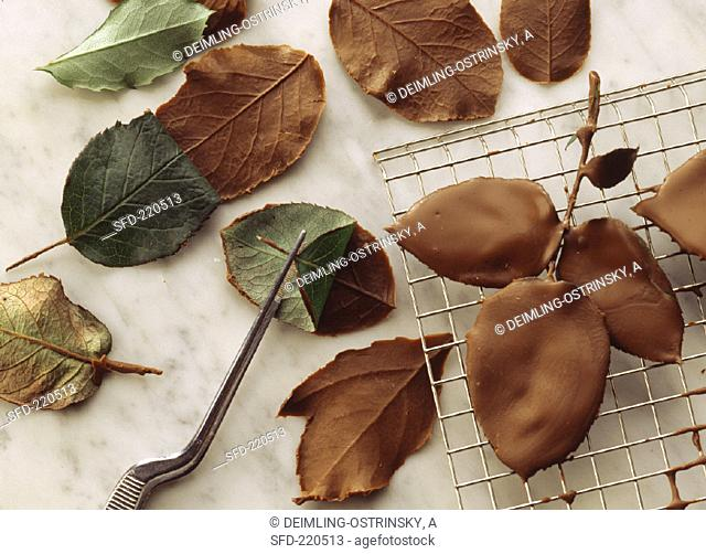 Chocolate leaves on cake rack and marble platter