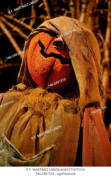 Stuffed pumpkin walloween party