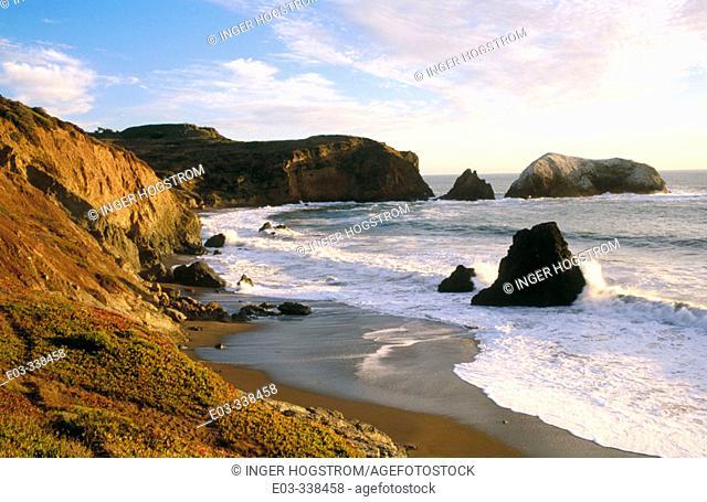 Bird rock. Rodeo Beach. Golden Gate National Recreation Area. Marin County. California. USA