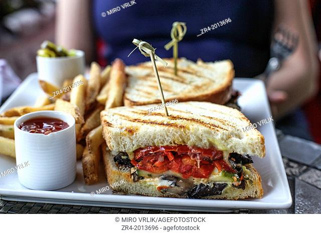 Colored sandwich with french fries