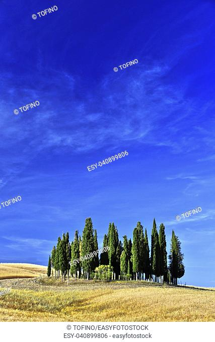 VAL D'ORCIA, ITALY - JUNE 12, 2017: Landscape view of Val d'Orcia, Tuscany, Italy. UNESCO World Heritage Site