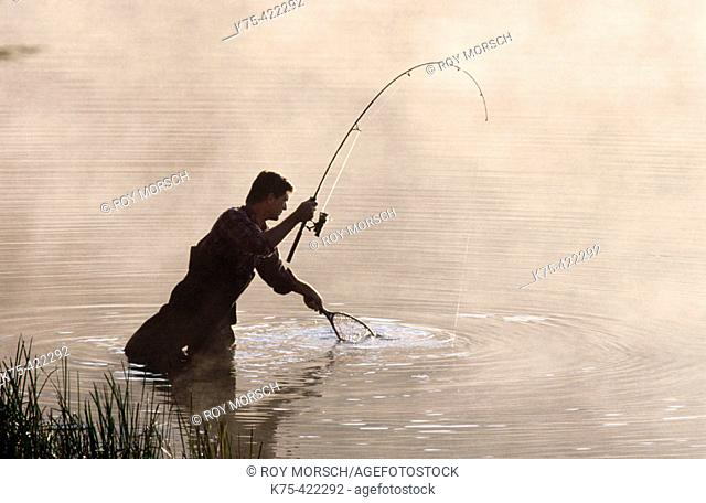 Catching a fish and netting it