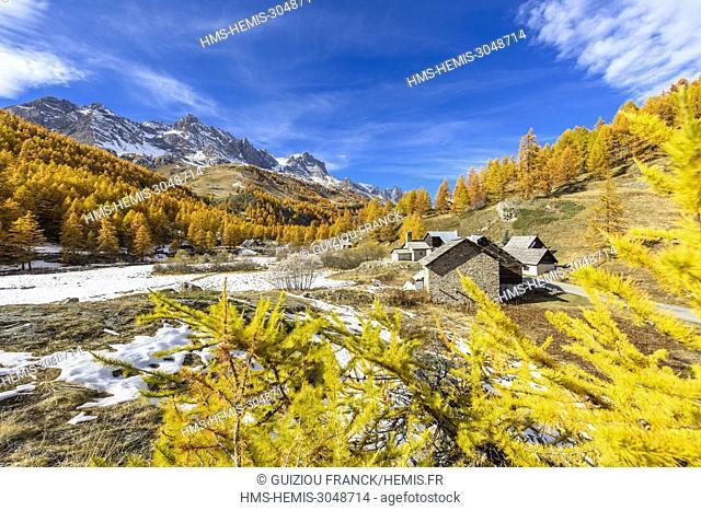 France, Hautes Alpes, Brianconnais in fall, Claree valley, Fontcouverte hamlet