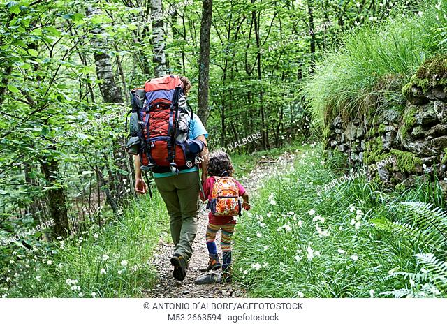 Mother and daughter hiking in the forest