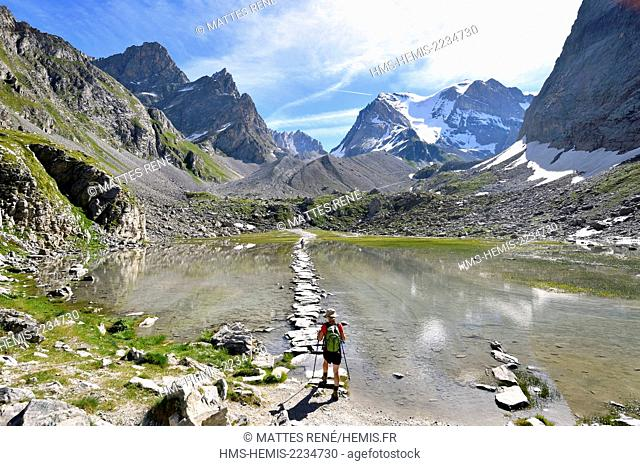 France, Savoie, Pralognan La Vanoise, GR55, path of the Vanoise Pass (salt and beaufort cheese route), Vaches lake and La Grande Casse (3855 m) in the...