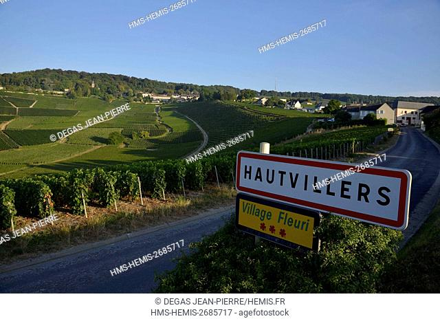 France, Marne, Hautvillers, Marne Valley, vineyard in Champagne area listed Premier Cru and listed as World Heritage by UNESCO with the village where was...