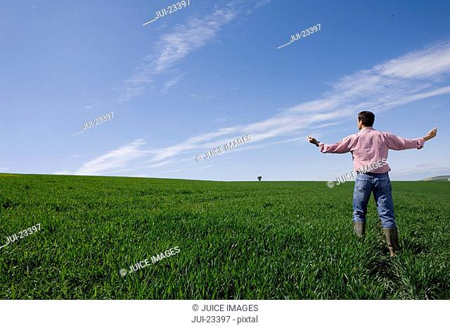 Farmer standing with arms outstretched in young wheat field