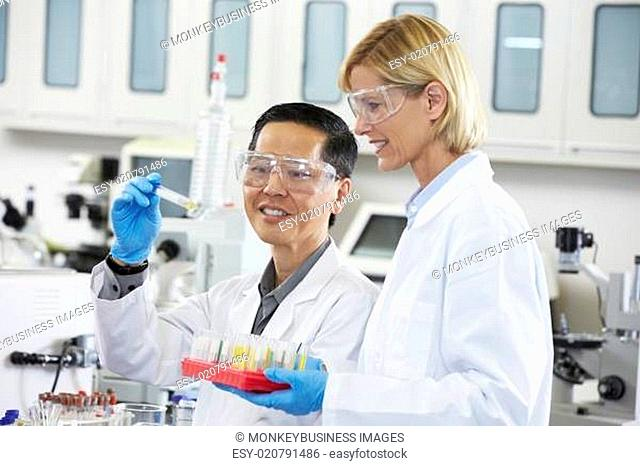 Male And Female Scientists Working In Laboratory