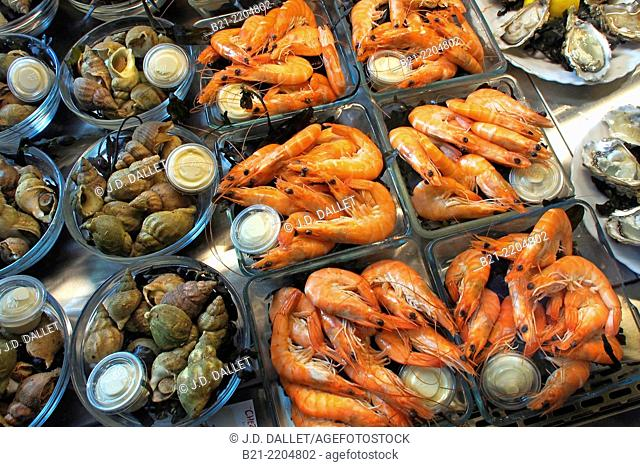 Seafood: sea snails, shrimps and oysters, France