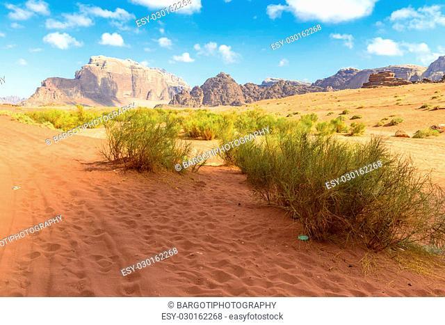 Wadi Rum desert in a sunny day in Jordan