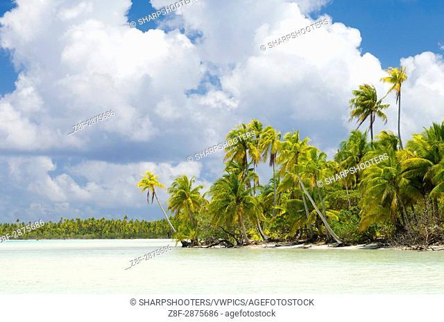 Blue Lagoon, Rangiroa, Tuamotu Archipelago, French Polynesia