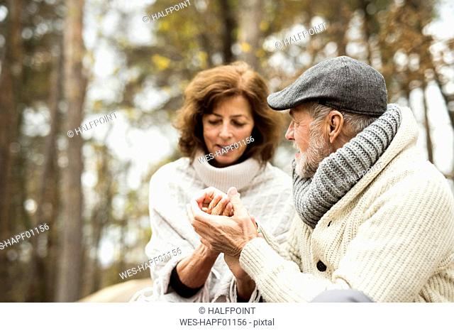 Senior holding hands in autumnal forest